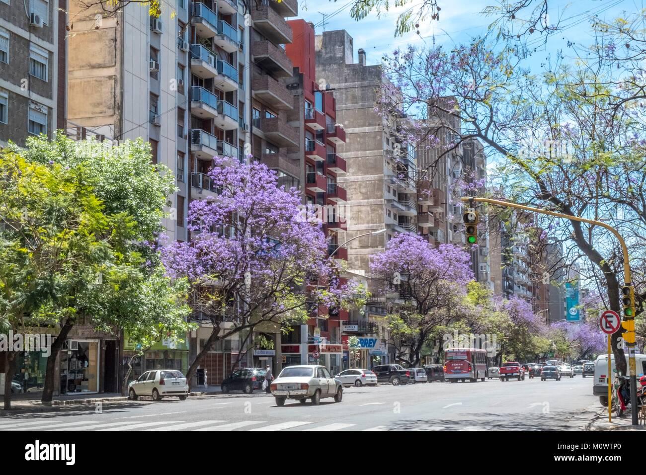 L'Argentine, Cordoba province,Cordoba,rue Chacabuco Photo Stock