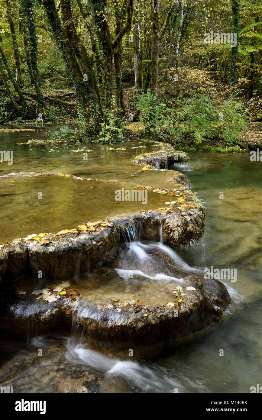 La France Le Jura Les Planches Pres Arbois La Source De La Cuisance Peu La Cascade De Tufs Bassins Photo Stock Alamy
