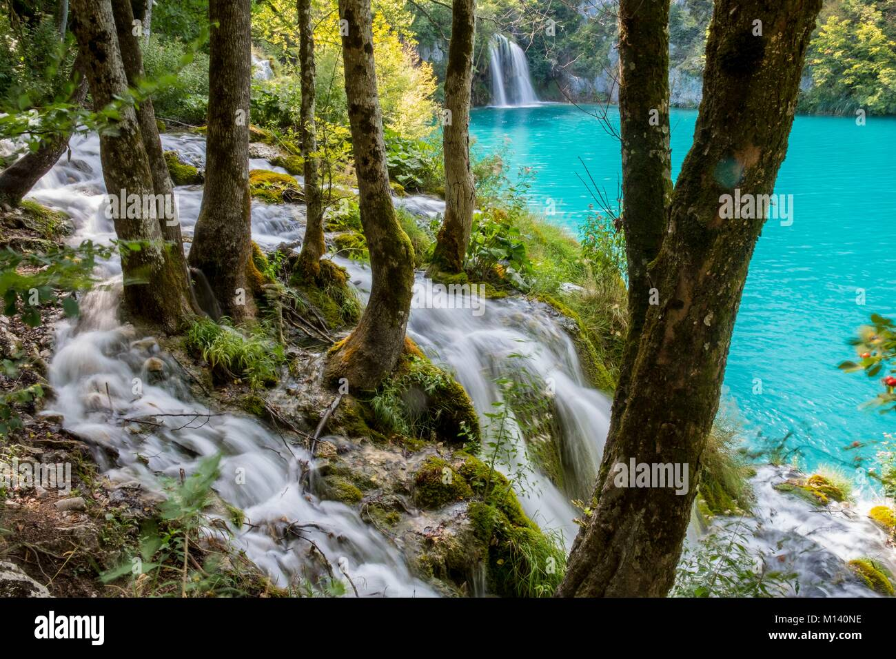 La Croatie, Dalmatie du Nord, le parc national des Lacs de Plitvice classé au Patrimoine Mondial de l'UNESCO, Photo Stock