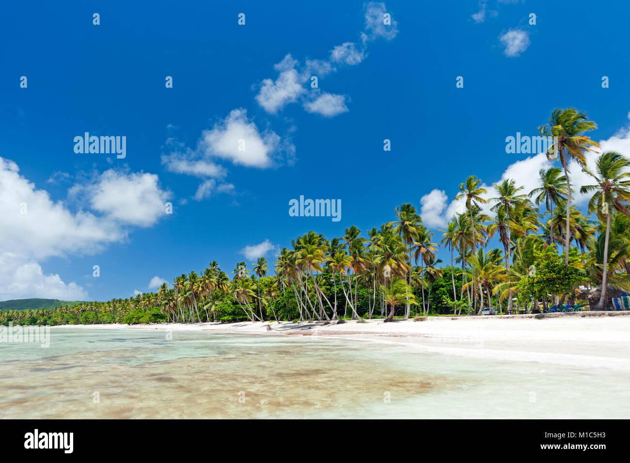 Belle plage tropicale des Caraïbes sur la péninsule de Samaná, République Dominicaine Photo Stock