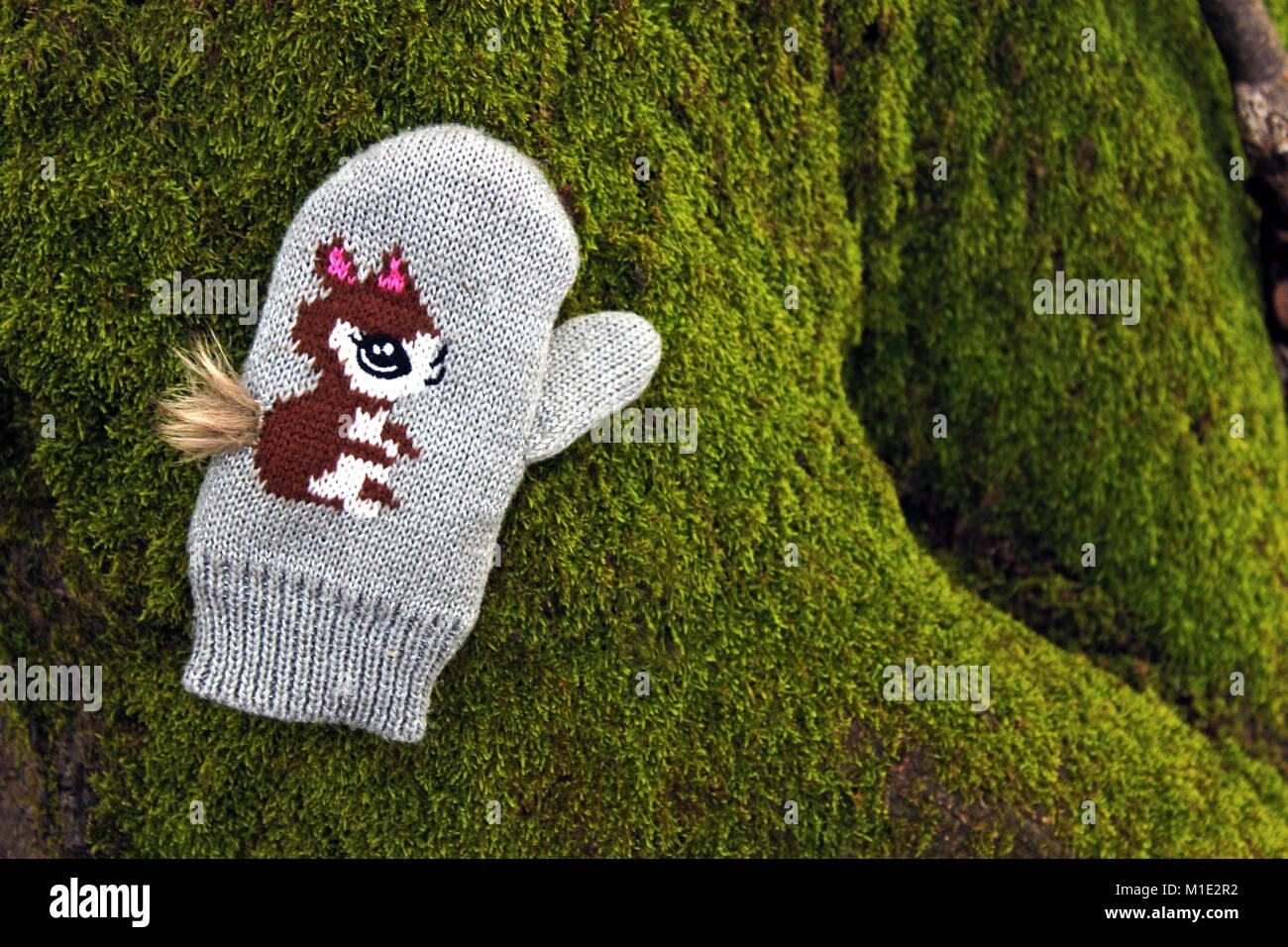 Enfants tricotés main avec un motif d'écureuil couché sur les racines des arbres moussus Photo Stock