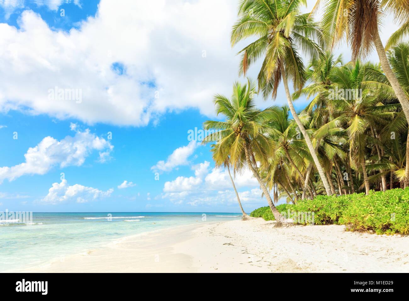 Vacances en République Dominicaine Photo Stock