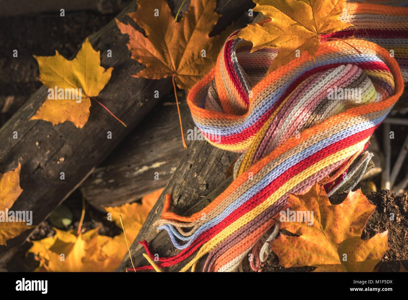 b8f95ffff723 Foulard multicolore jaune et d érable et de feuilles de chêne sur les  journaux.
