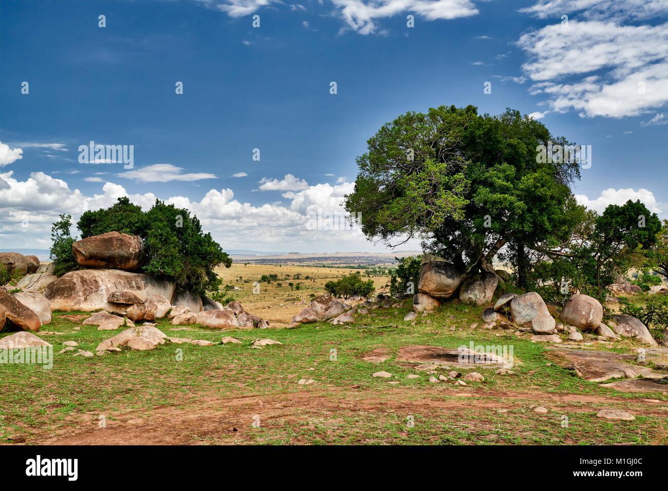 Paysage du Parc National de Serengeti, UNESCO World Heritage site, Tanzania, Africa Photo Stock