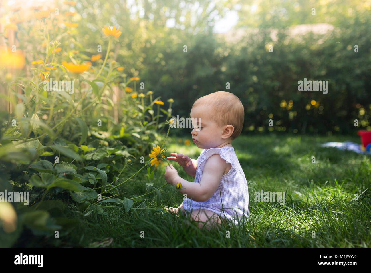Baby Girl Sitting in Grass Holding Flower Photo Stock