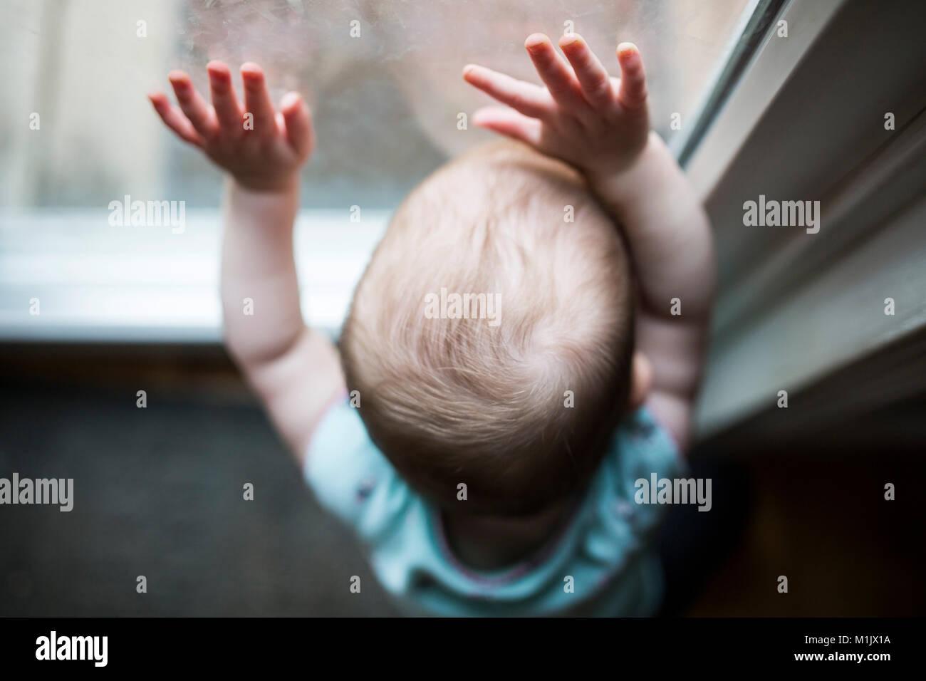 Portrait de bébé avec les mains sur la fenêtre Photo Stock