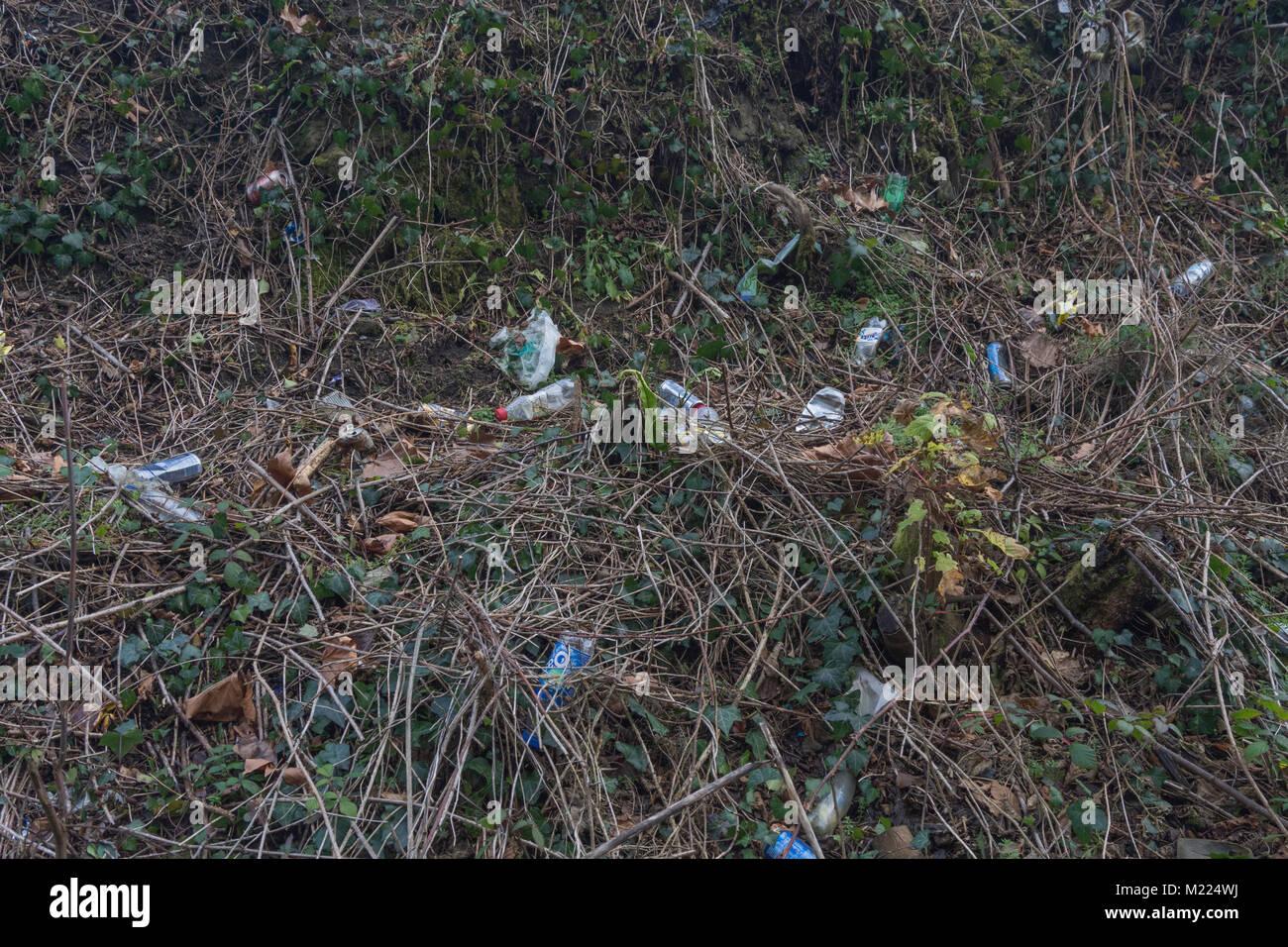 Bouteille plastique échoués sur zone marécageuse - métaphore de la pollution environnementale, Photo Stock