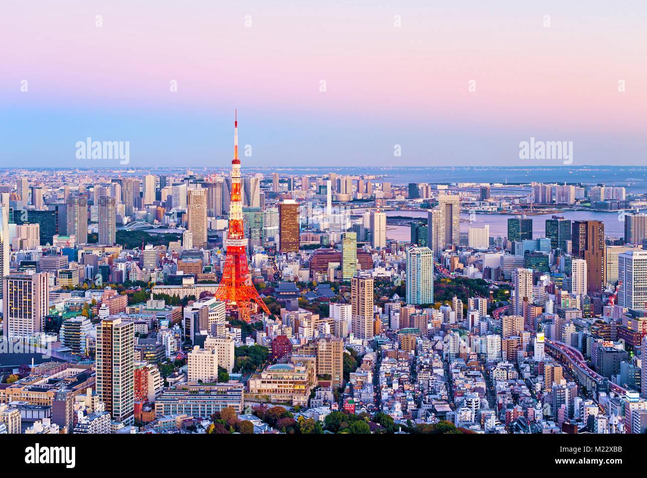 Toits de Tokyo Tokyo Tower Vue Crépuscule Photo Stock