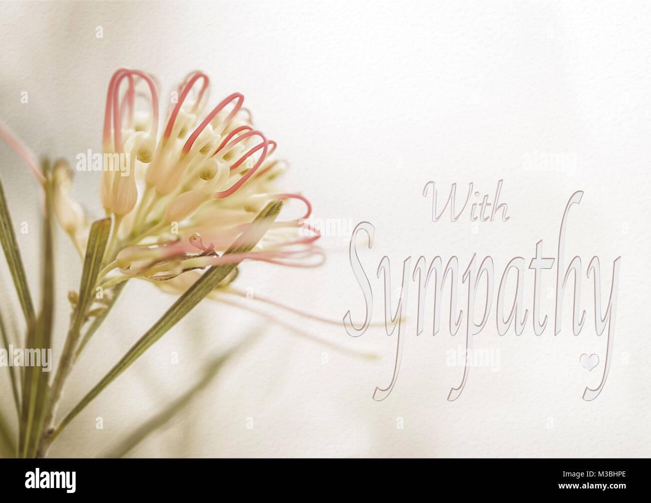 Carte De Condoléances Avec Fleur Grevillea Australienne Dans