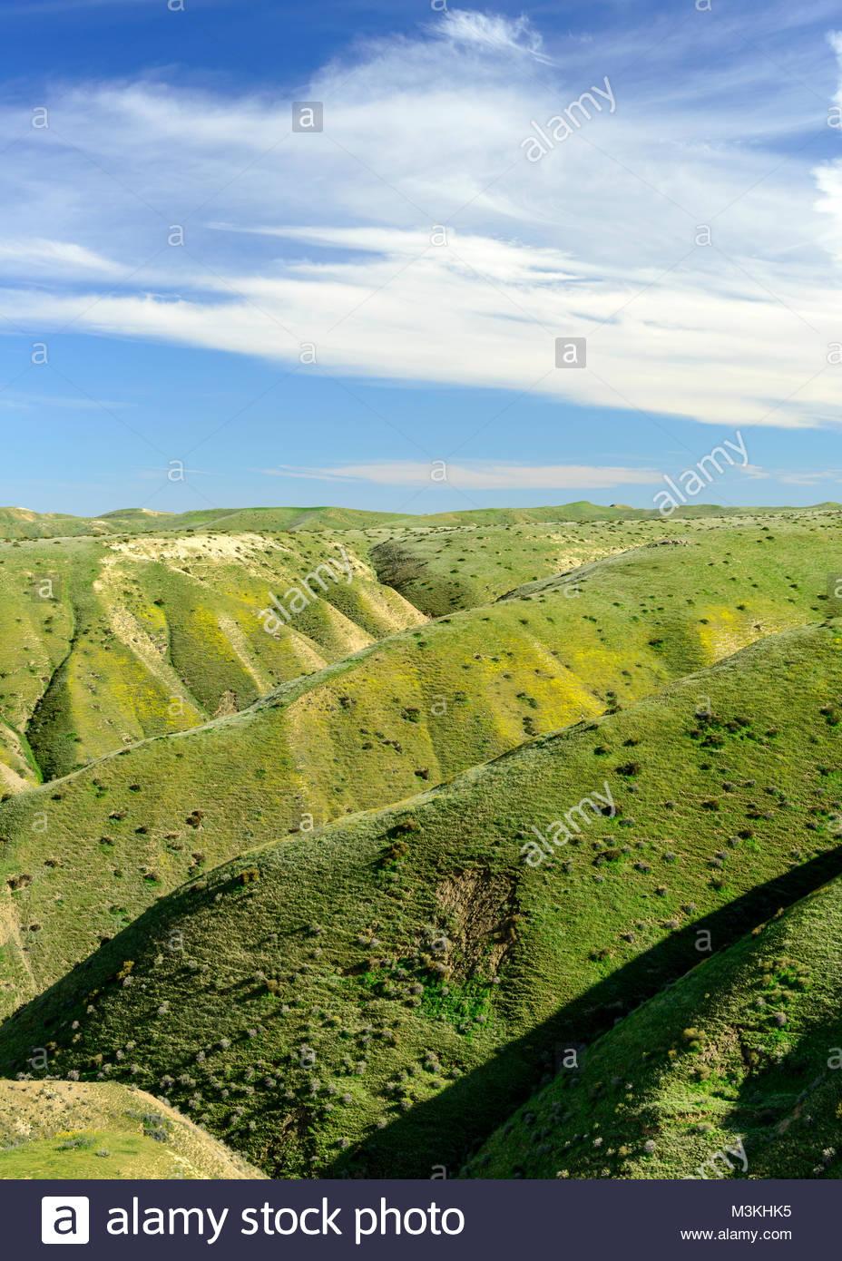 Panoche Hills Wilderness Zone d'étude au printemps, comté de Fresno, Californie Photo Stock