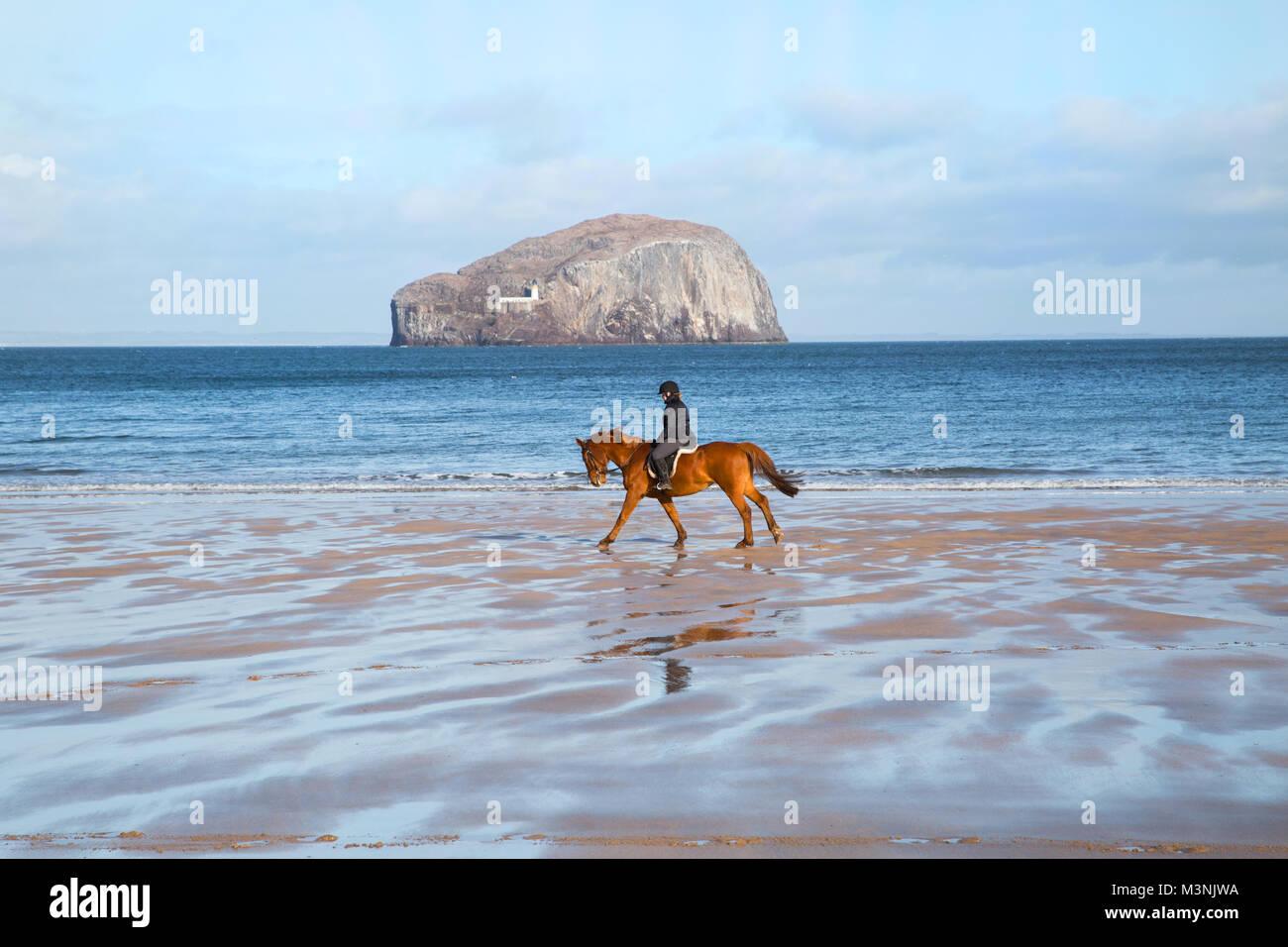 L'équitation sur Seacliffe beach Photo Stock