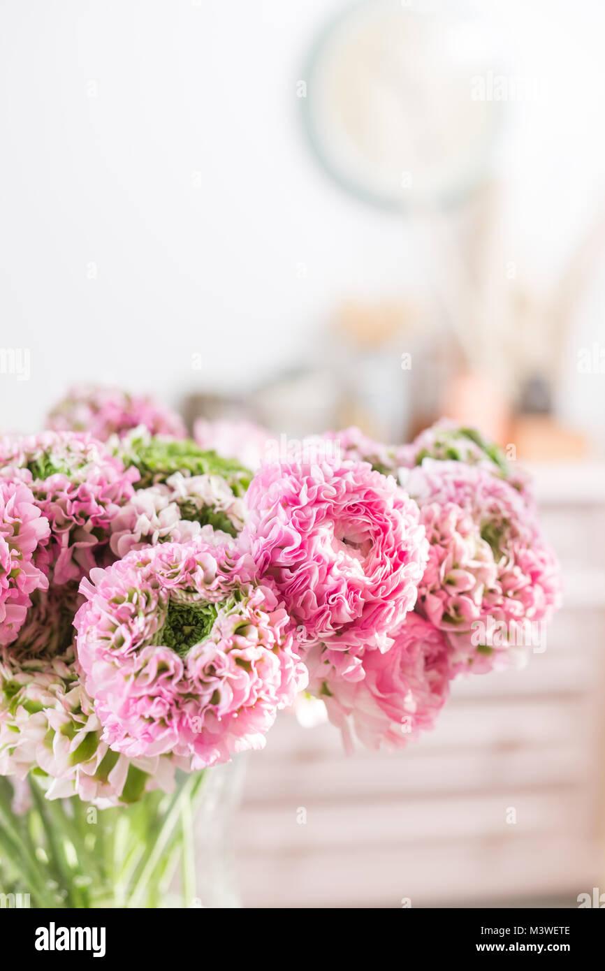 Persian buttercup. Dentelle avec de nombreux pétales. Bouquet de renoncules roses fleurs fond clair. Wallpaper Banque D'Images