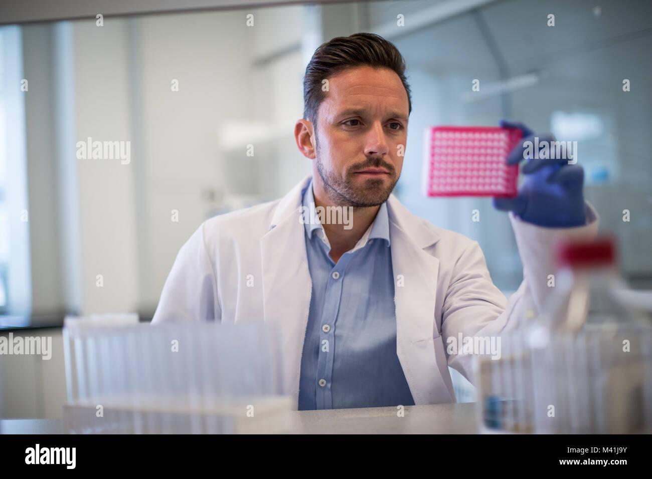 Libre à la microplaque à dans un laboratoire Photo Stock