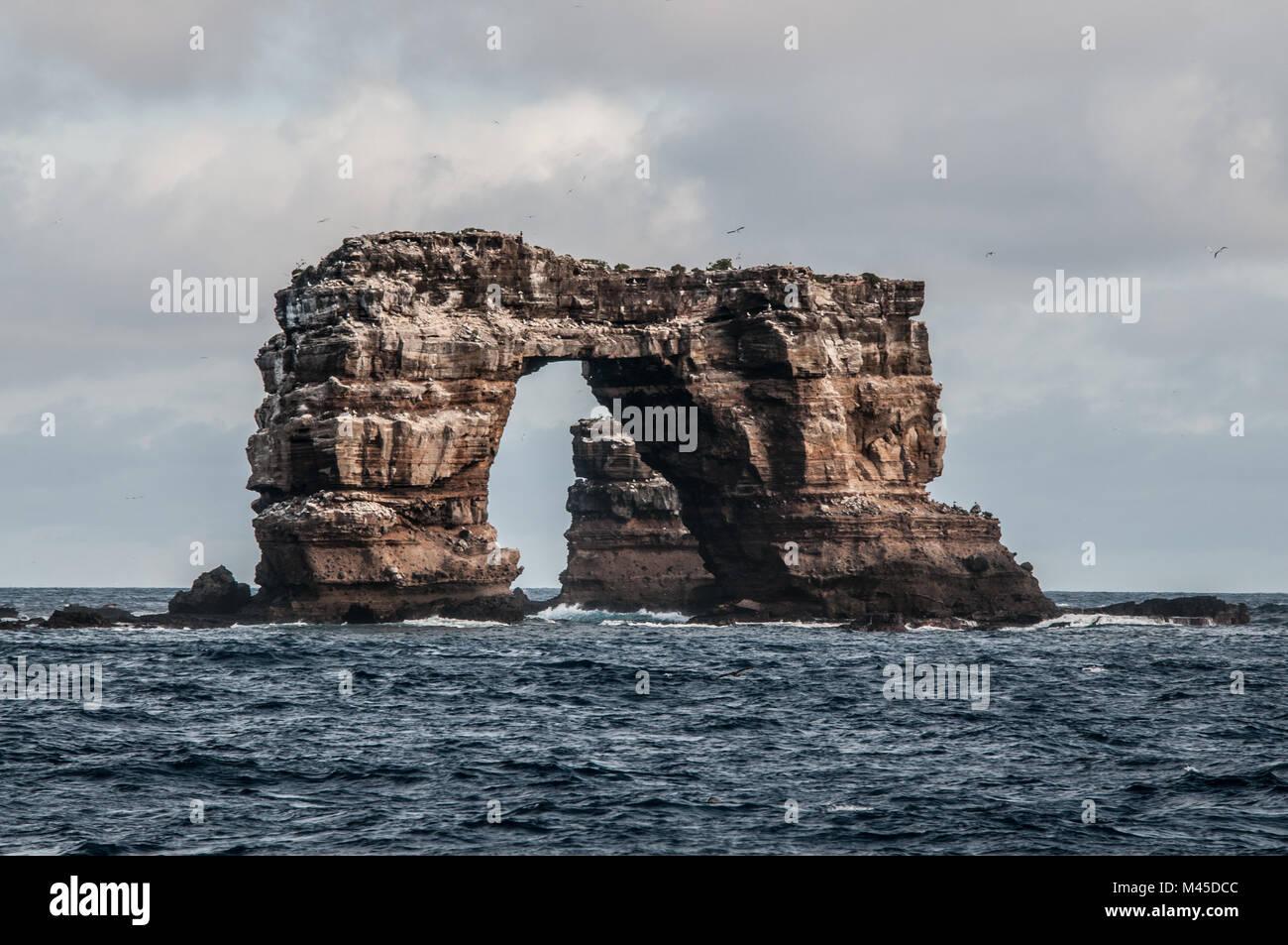 L'arche de Darwin, Darwin, de l'île Seymour, Galapagos, Equateur, Amérique du Sud Banque D'Images