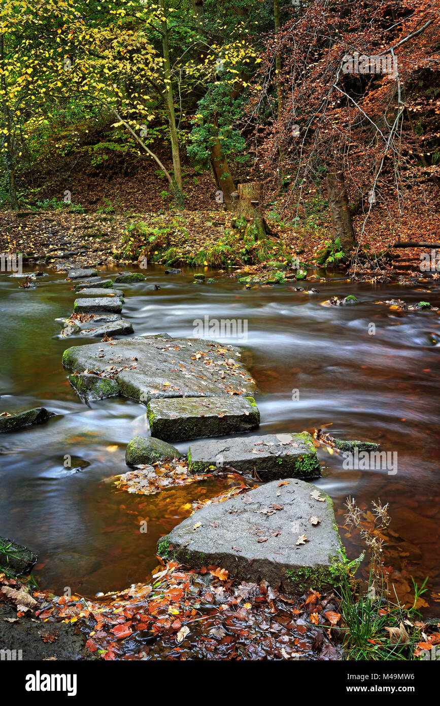 UK,South Yorkshire,Sheffield,Stepping Stones Rivelin Banque D'Images