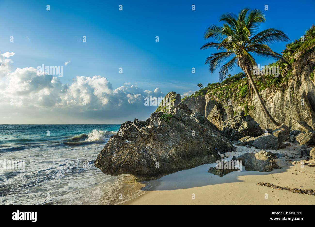 Plage des Caraïbes avec cocotier, Tulum, Mexique Photo Stock
