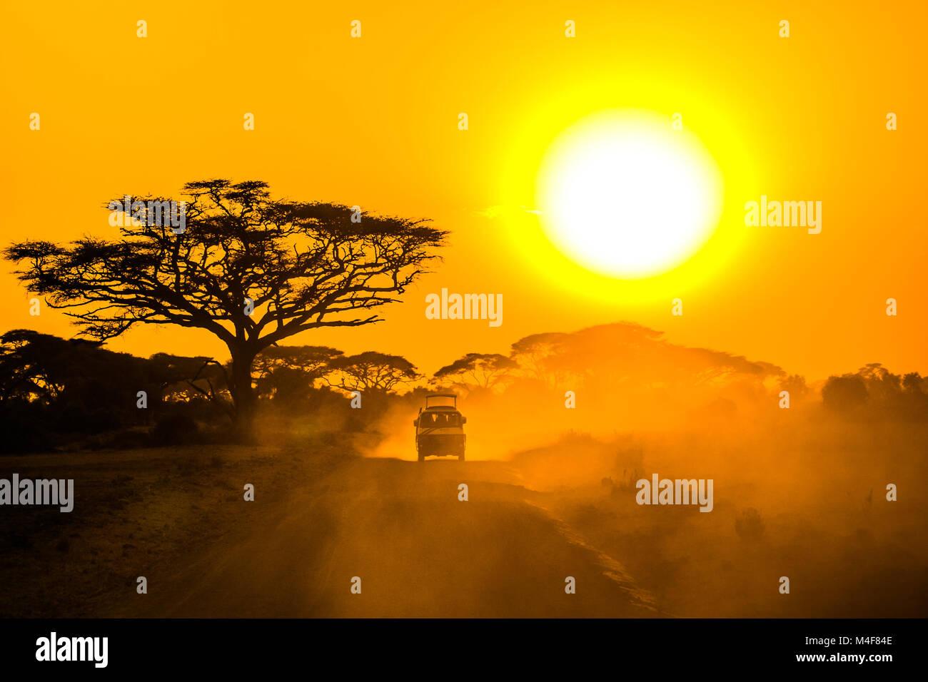 Jeep safari à travers la savane au coucher du soleil Photo Stock