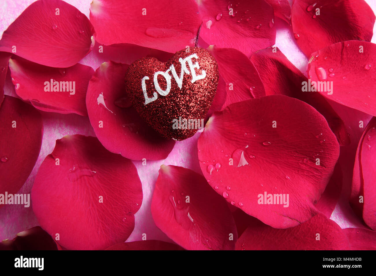Concept D Amour Avec Des Petales De Rose Rouge Et Imprime De L Amour