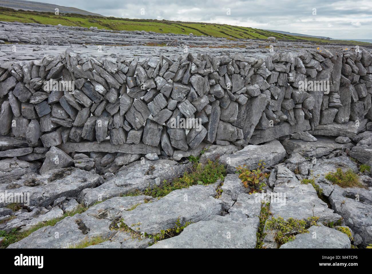 Mur de pierre et lapiez, le Burren, comté de Clare, Irlande. Photo Stock