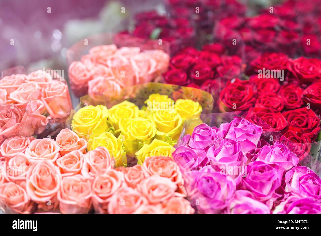 Multiclored Bouquets De Roses Fond De Fleurs Fraîches