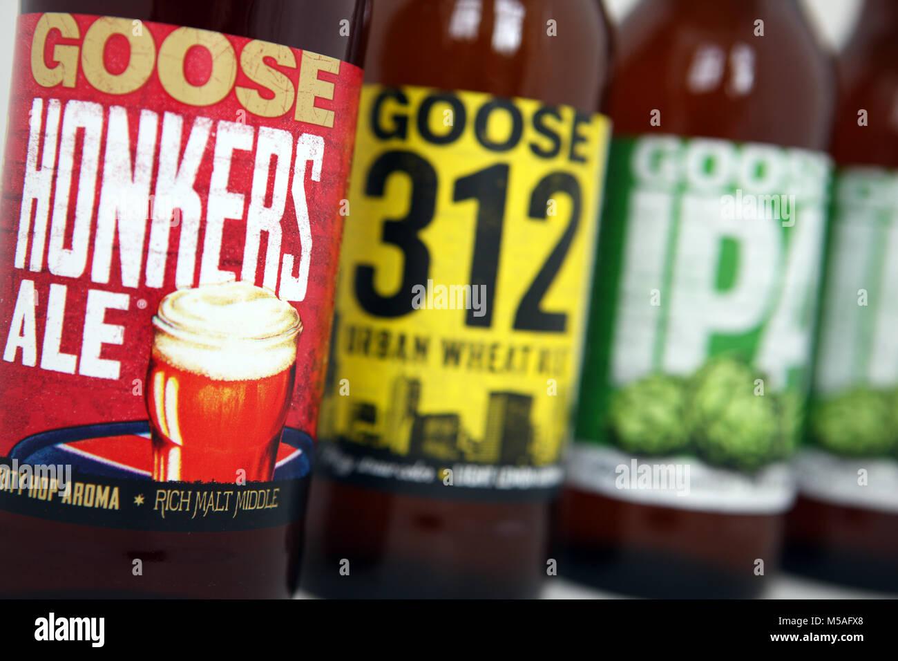 Bouteilles de bière d'oie Banque D'Images