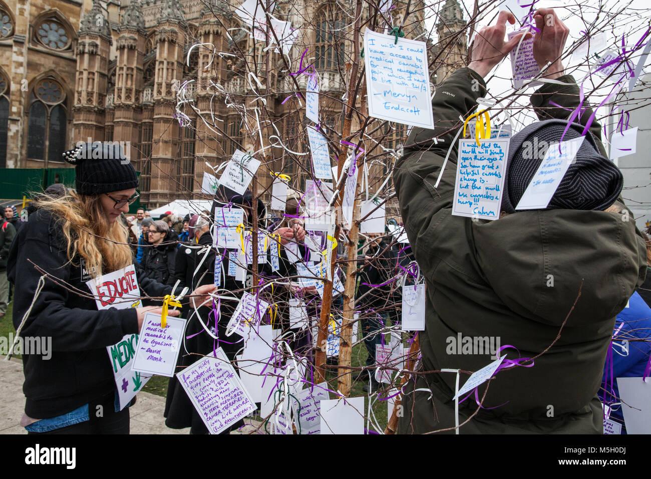 Londres, Royaume-Uni. 23 Février, 2018. Les partisans de l'Alliance Patients fixer des messages, ou 'Canna-Wishes', à un arbre des désirs en face du Parlement lors d'un rassemblement organisé à l'occasion de la deuxième lecture au Parlement de la légalisation du cannabis à des fins médicinales (Loi 2017-19), également connu sous le nom de l'Elizabeth Brice Loi après un multiple sclerosis patient décédé en 2011. Banque D'Images