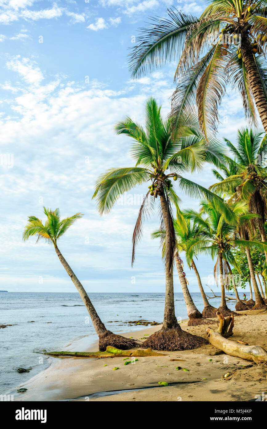 Costa Rica, Limon, Puerto Viejo, Chiquita Beach Photo Stock