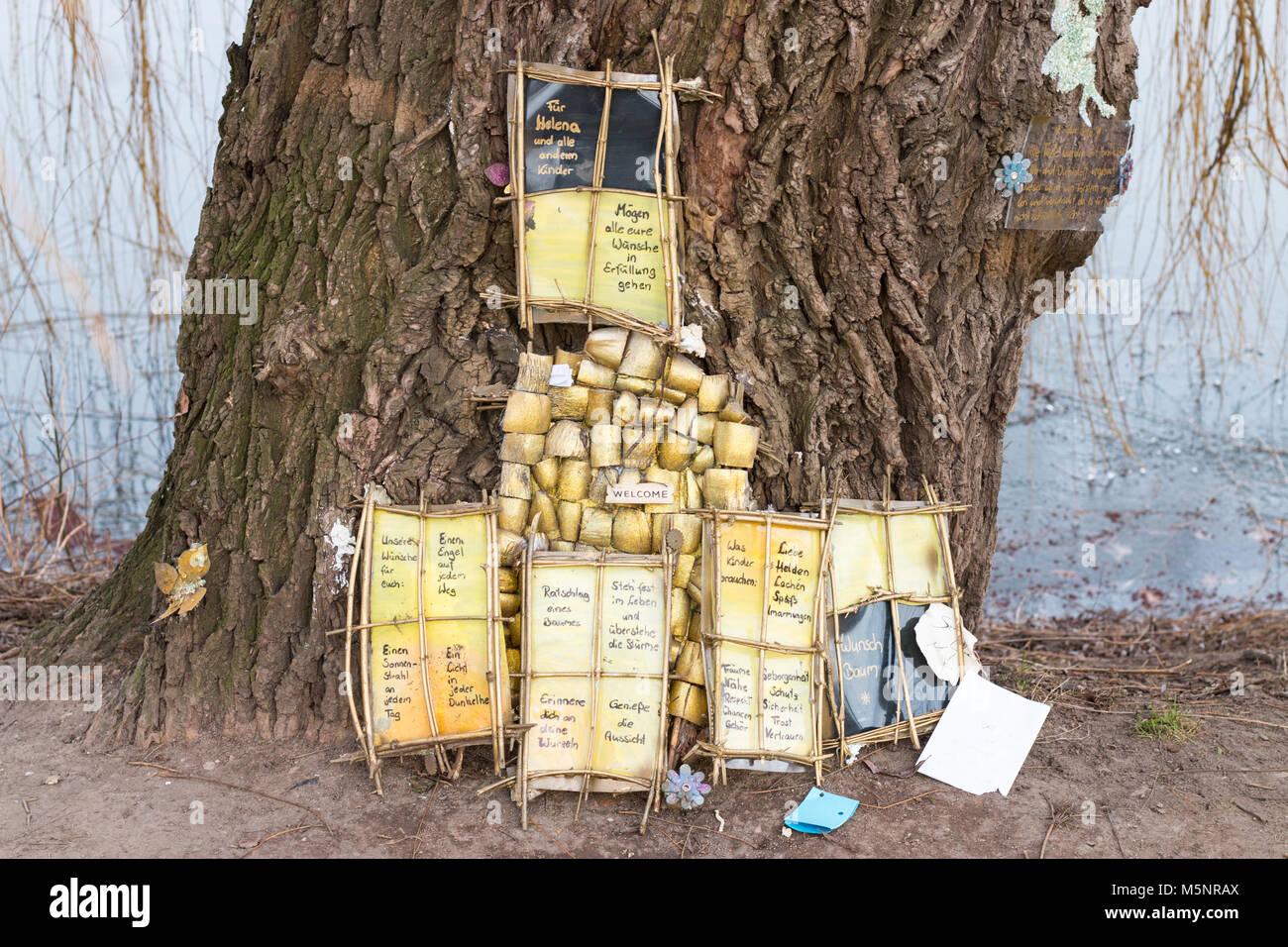 Magdeburg, Allemagne - Février 25,2018: un vieux saule est un arbre des désirs dans le parc de la ville de Magdeburg. Banque D'Images