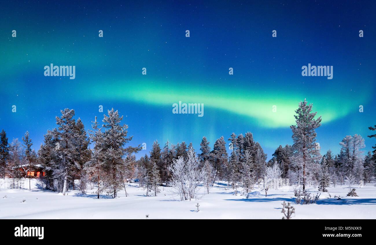 Aurora Borealis haliaeetus incroyable sur la magnifique décor hivernal féérique avec des arbres et Photo Stock