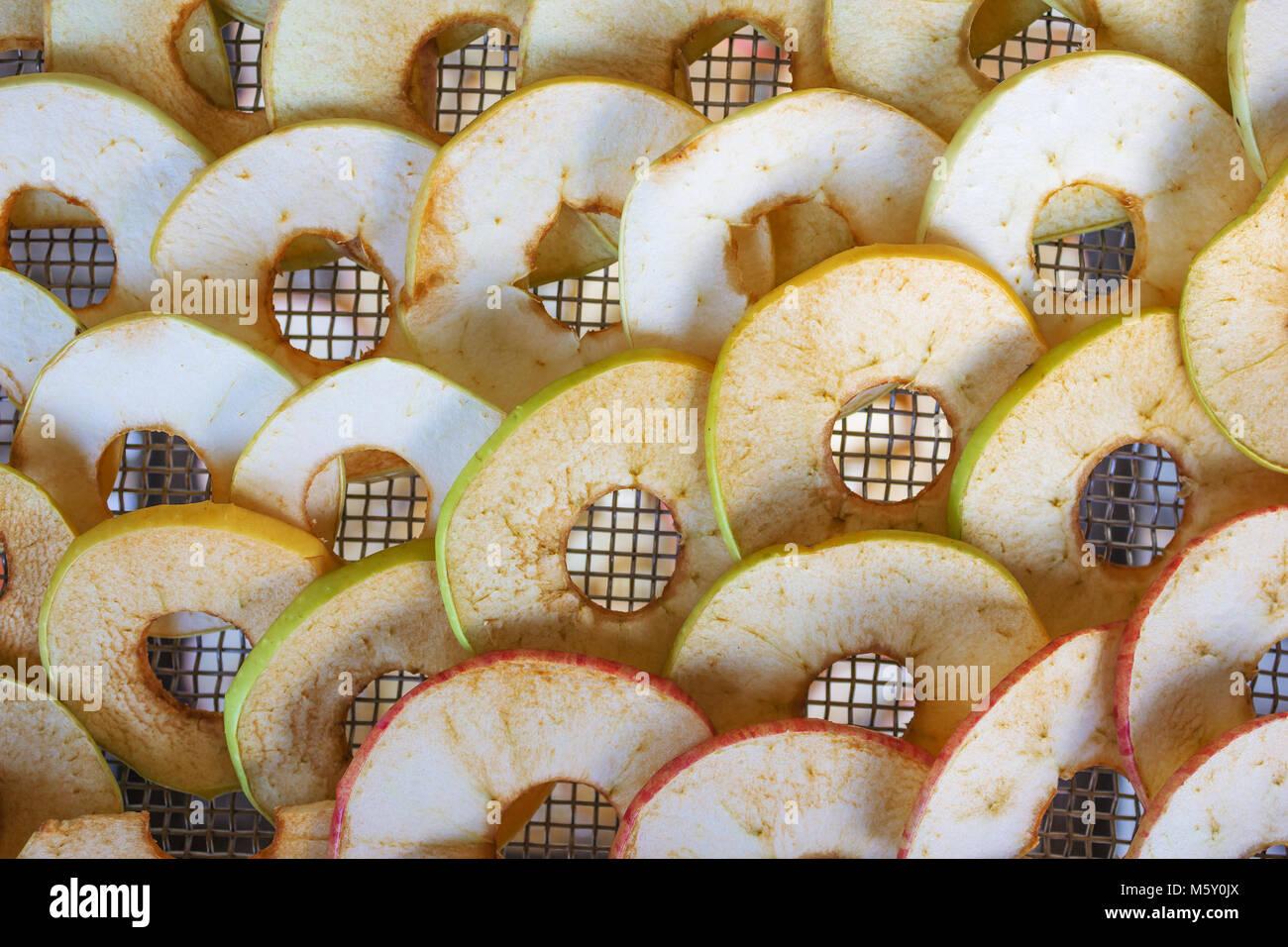 Les pommes sont mis sur la grille, du sèche-linge Photo Stock