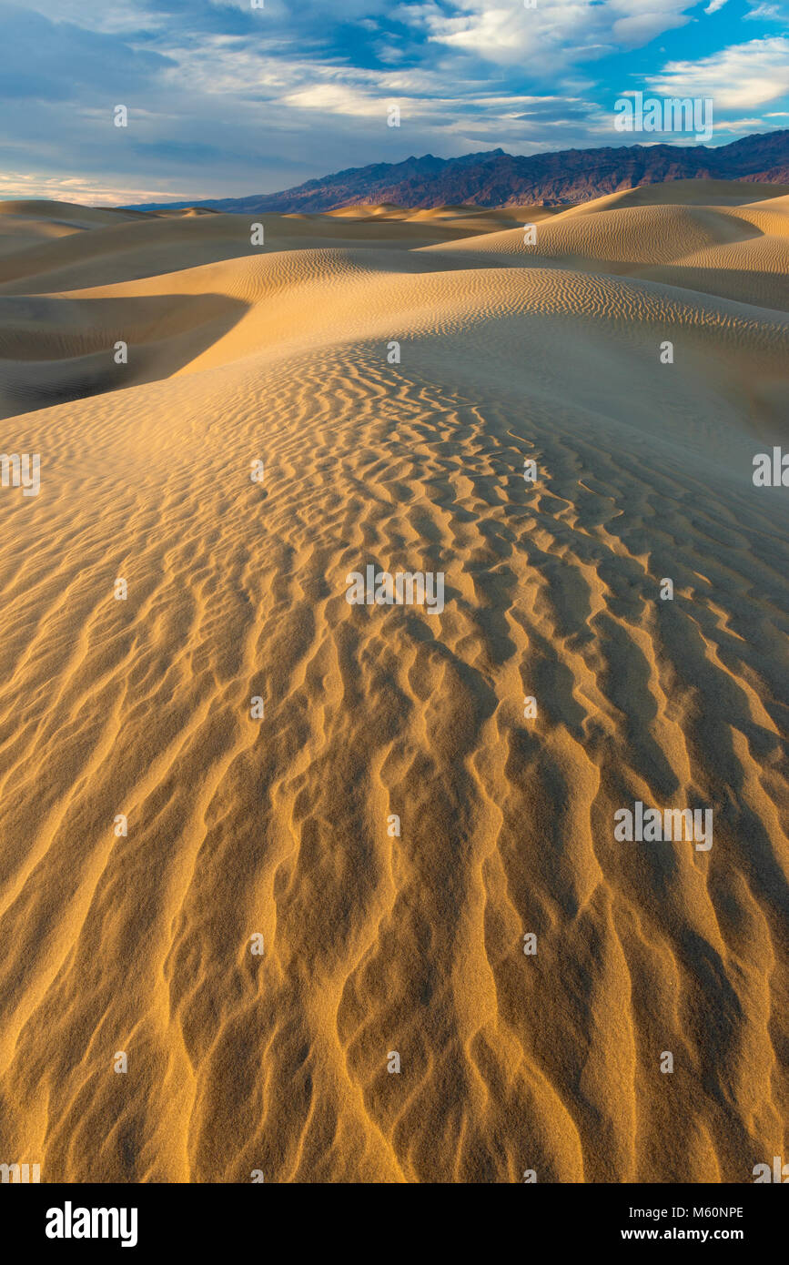 Mesquite Dunes, Death Valley National Park, Californie Photo Stock