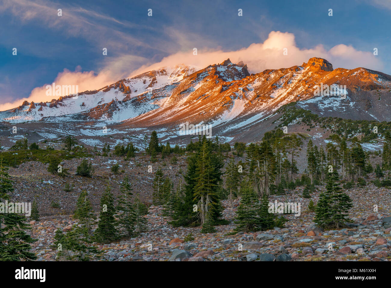 Le mont Shasta, Panther pré, Shasta-Trinity National Forest, Californie Photo Stock