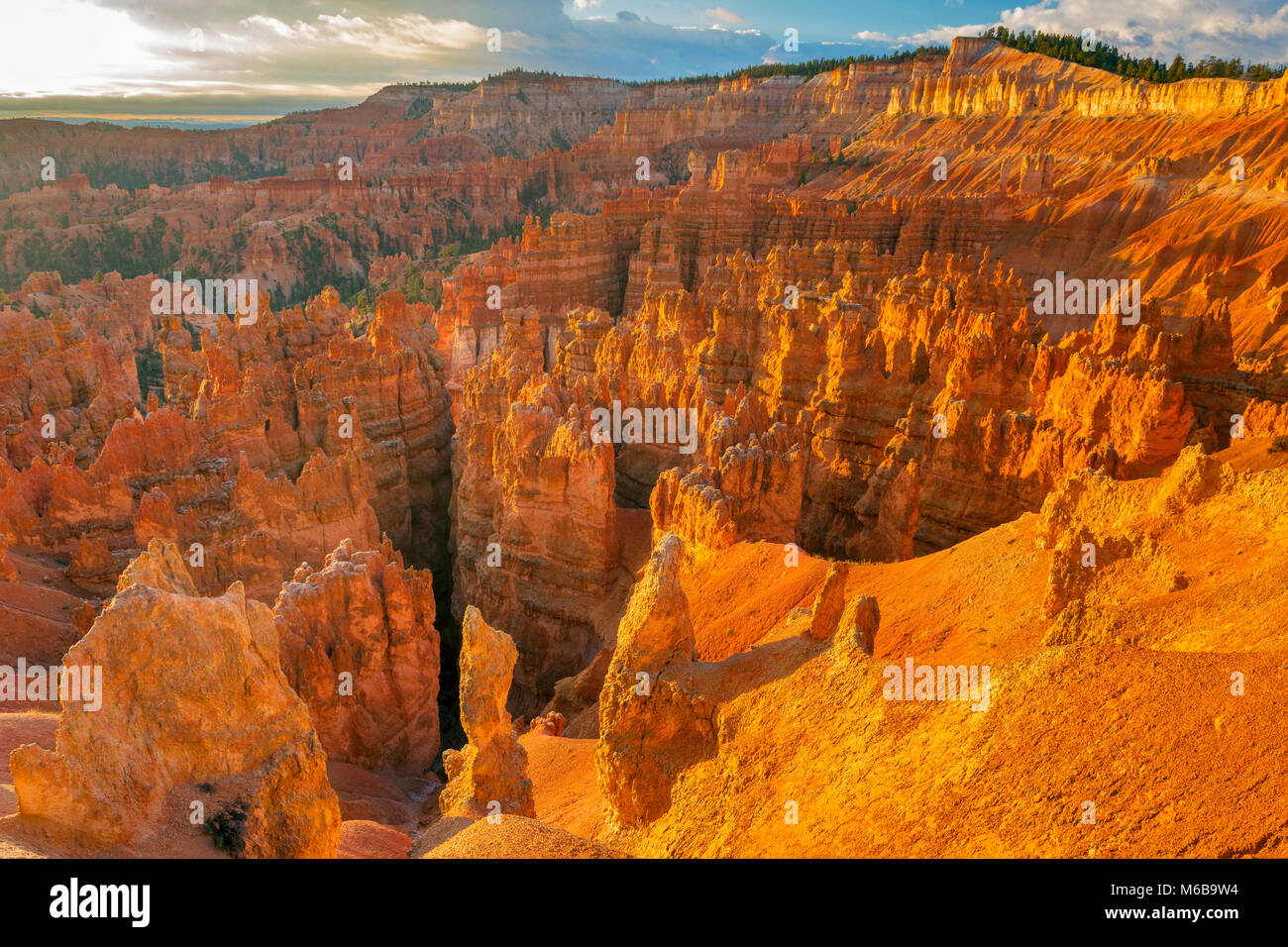 Lever du soleil, Hoodoos, Wall Street, le Parc National de Bryce Canyon, Utah Photo Stock
