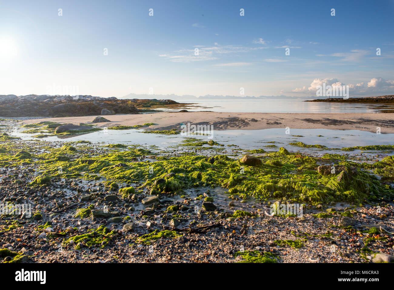 La marée est basse. Dans l'horizon est le mur de Iles Lofoten. La fin de nuit à la côte d'Engeloya Photo Stock