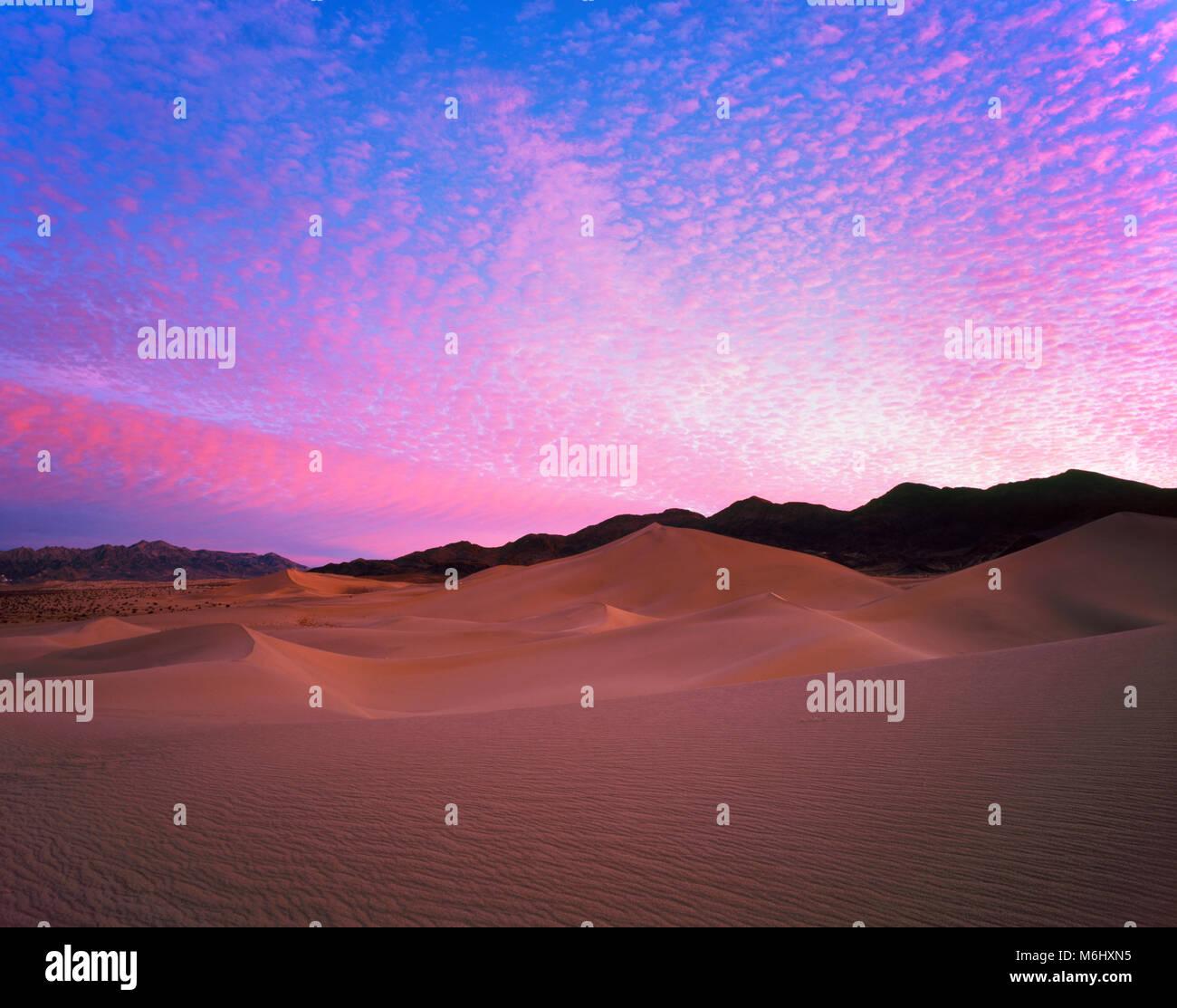 Dawn, Bouquetin Dunes, Death Valley National Park, Californie Photo Stock