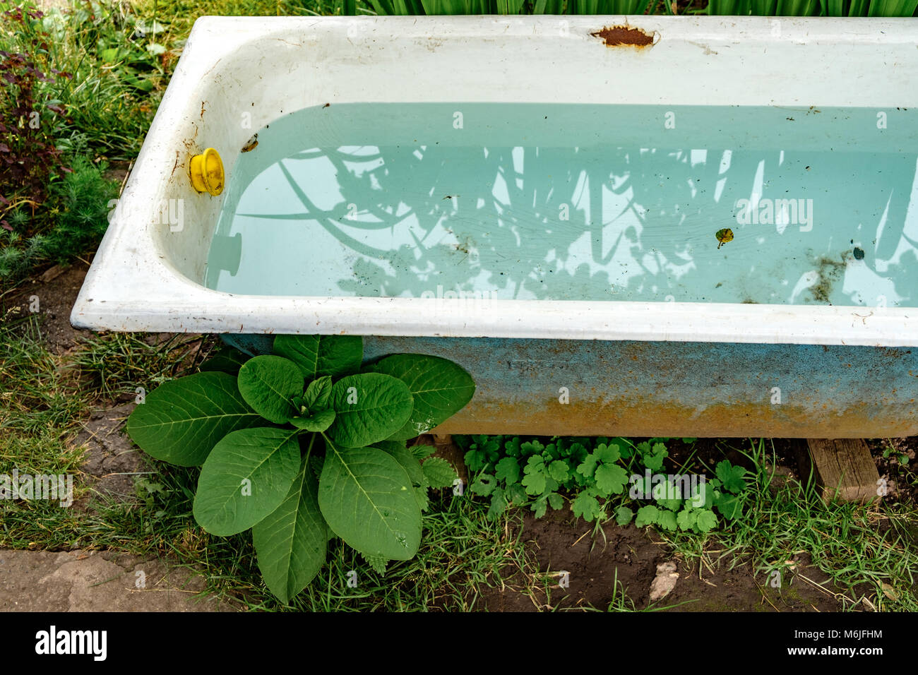 Génial Que Faire Avec Une Vieille Baignoire vieille baignoire avec de l'eau propre dans le jardin privé banque d