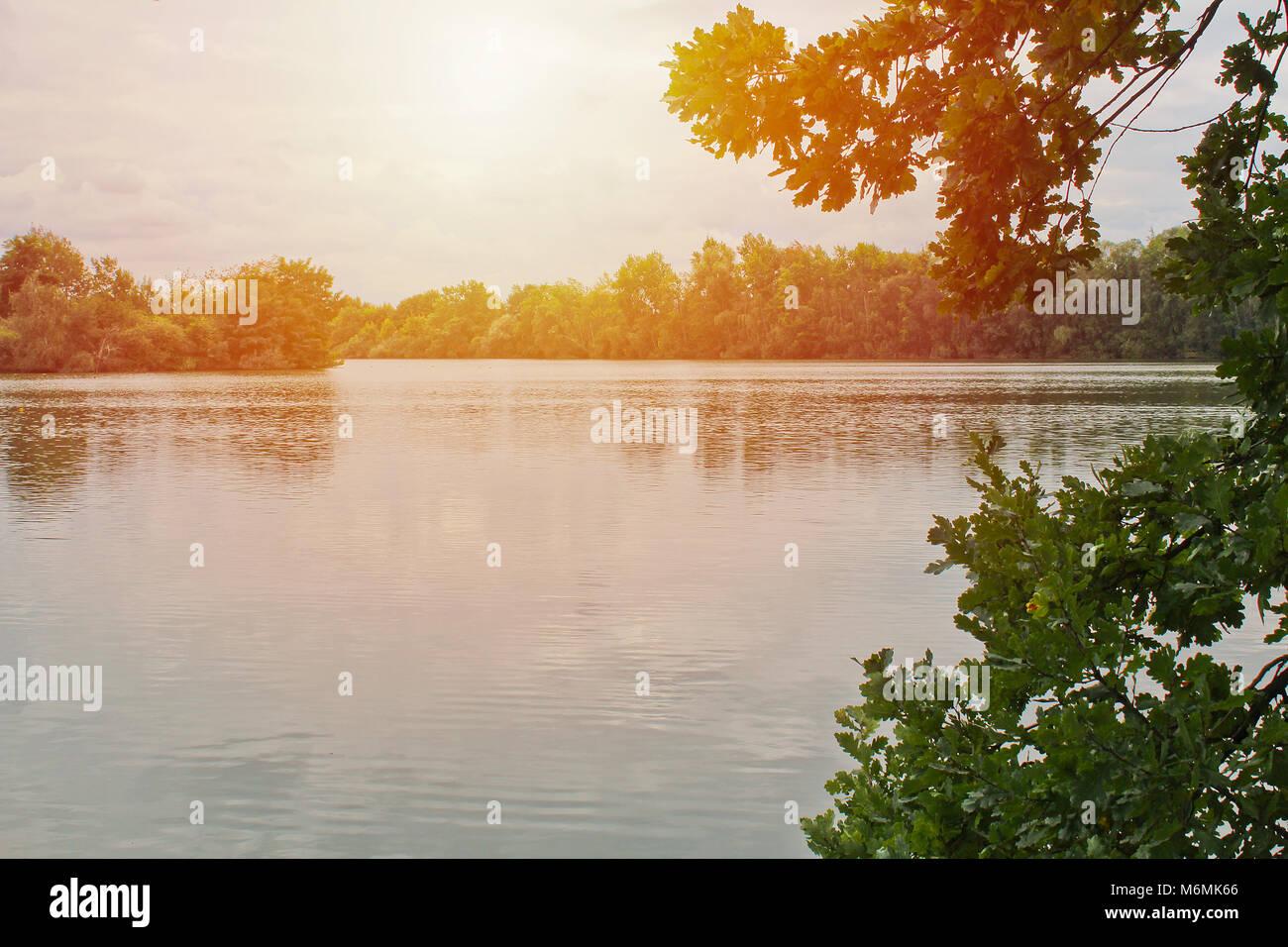 Étang avec des arbres et une forte lumière, paysage tchèque Banque D'Images
