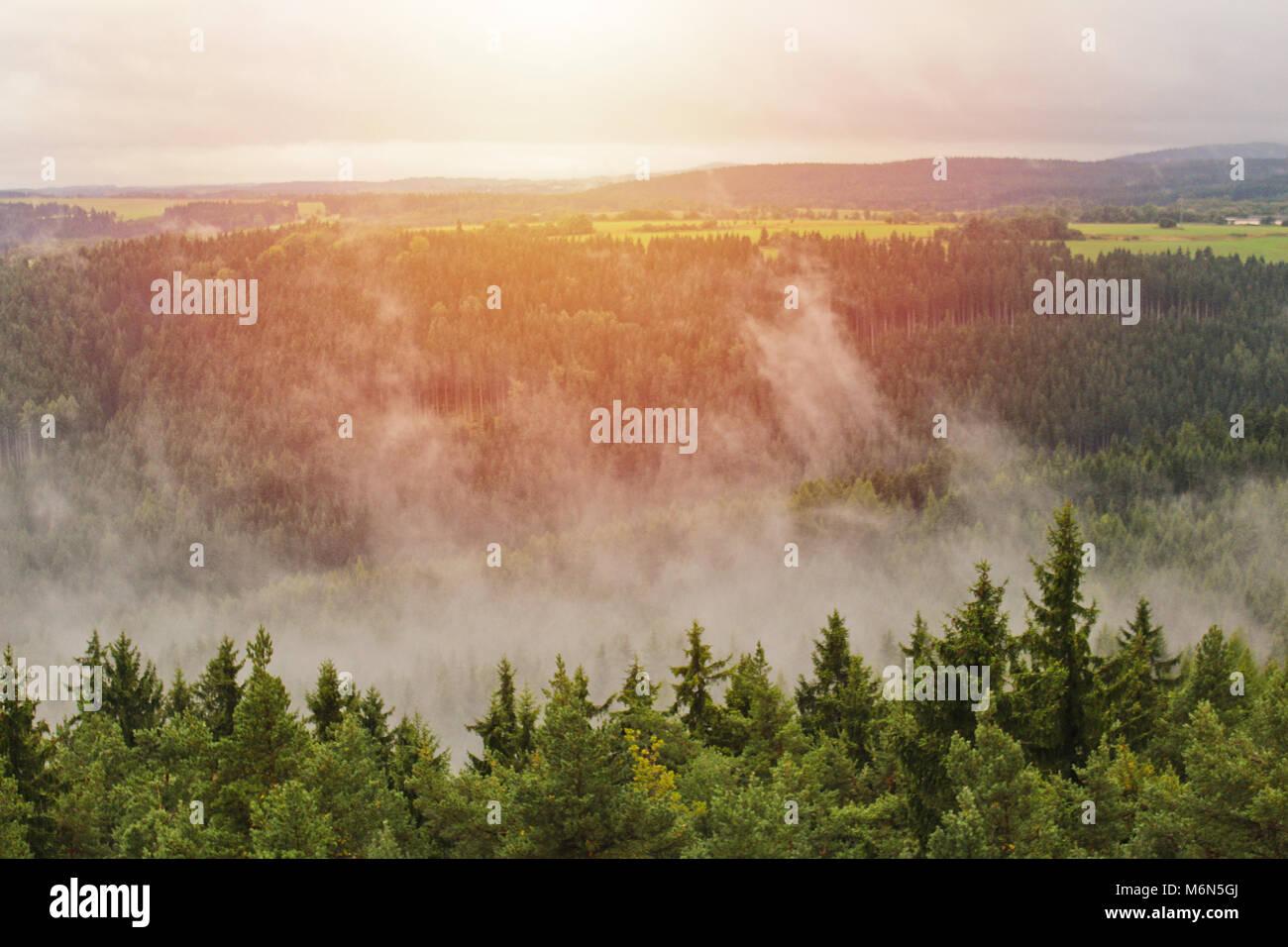 Brouillard brumeux sur les arbres et neadow a avec Sun, paysage tchèque Banque D'Images