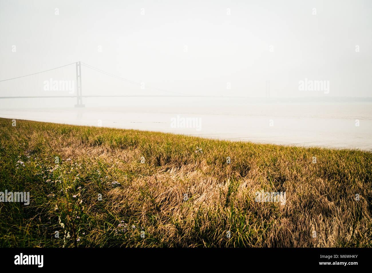 Le Humber Bridge vu de la rive sud de la rivière à Barton upon Humber dans une roselière, brume atmosphérique, Photo Stock