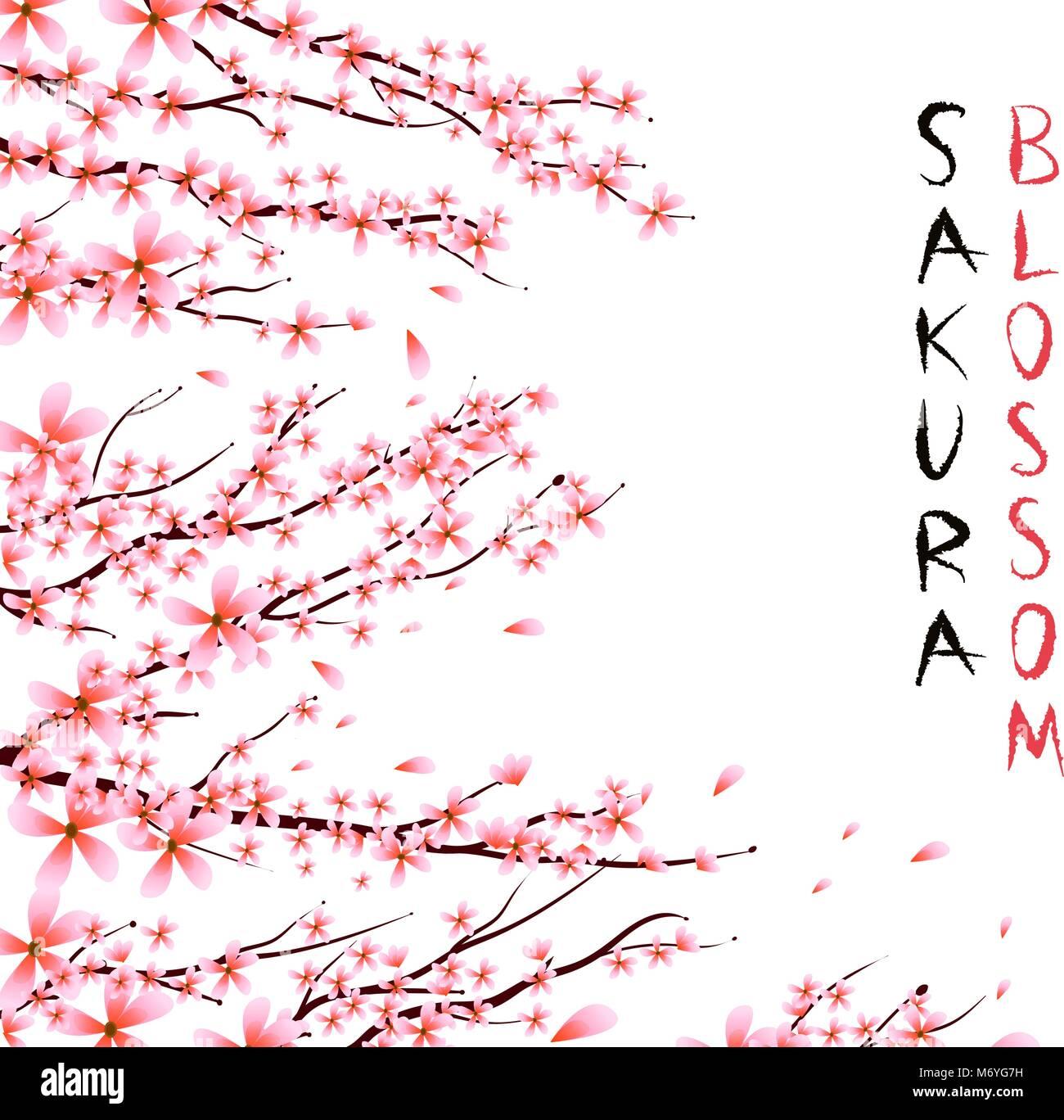 Cerisier Du Japon Sakura Branche Avec Fleurs La Direction De Sakura En Fleurs Rose Fleurs Illustration Vecteur De Printemps Image Vectorielle Stock Alamy