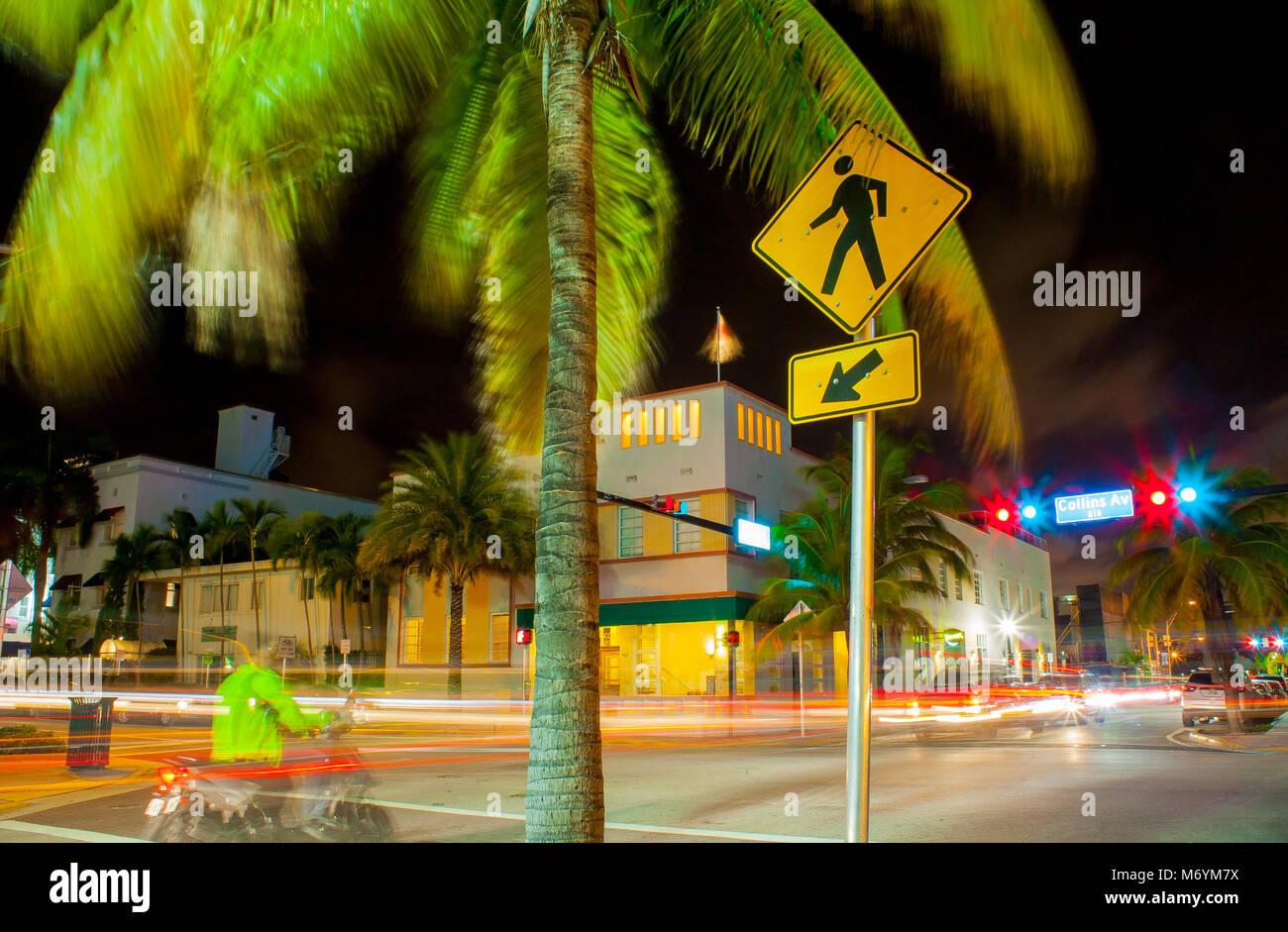 Rues de Miami la nuit avec palmiers et feux de trafic. Cycliste en attente à l'intersection. Photo Stock