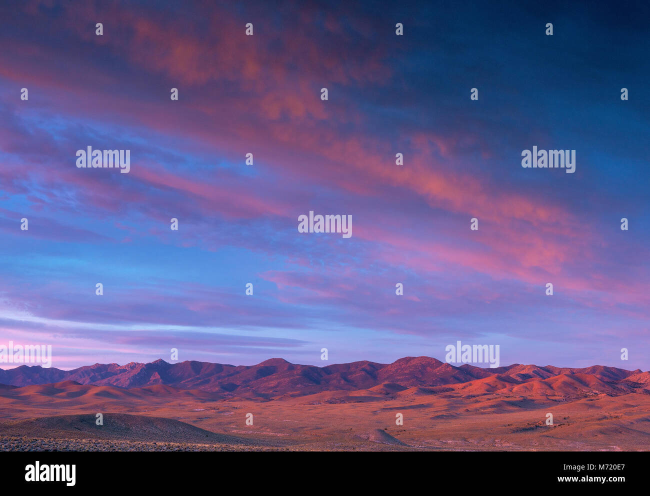 L'aube, le Coyote Sommet, Timpahute Gamme, Nevada Photo Stock