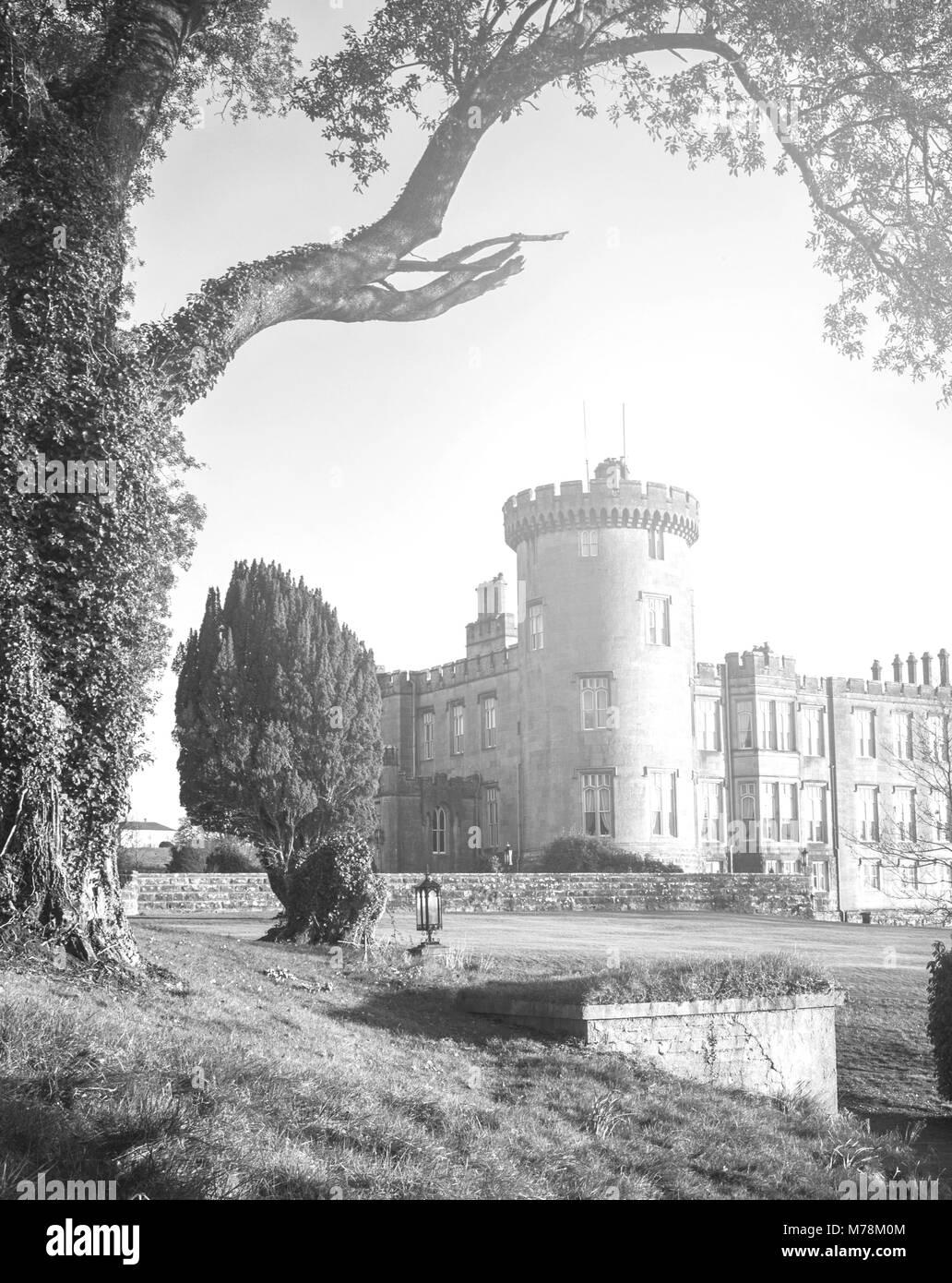 9ae1de109c Beau paysage noir et blanc photographie d'un vieux château celtique  irlandais Irlande pittoresque . château situé dans une forêt