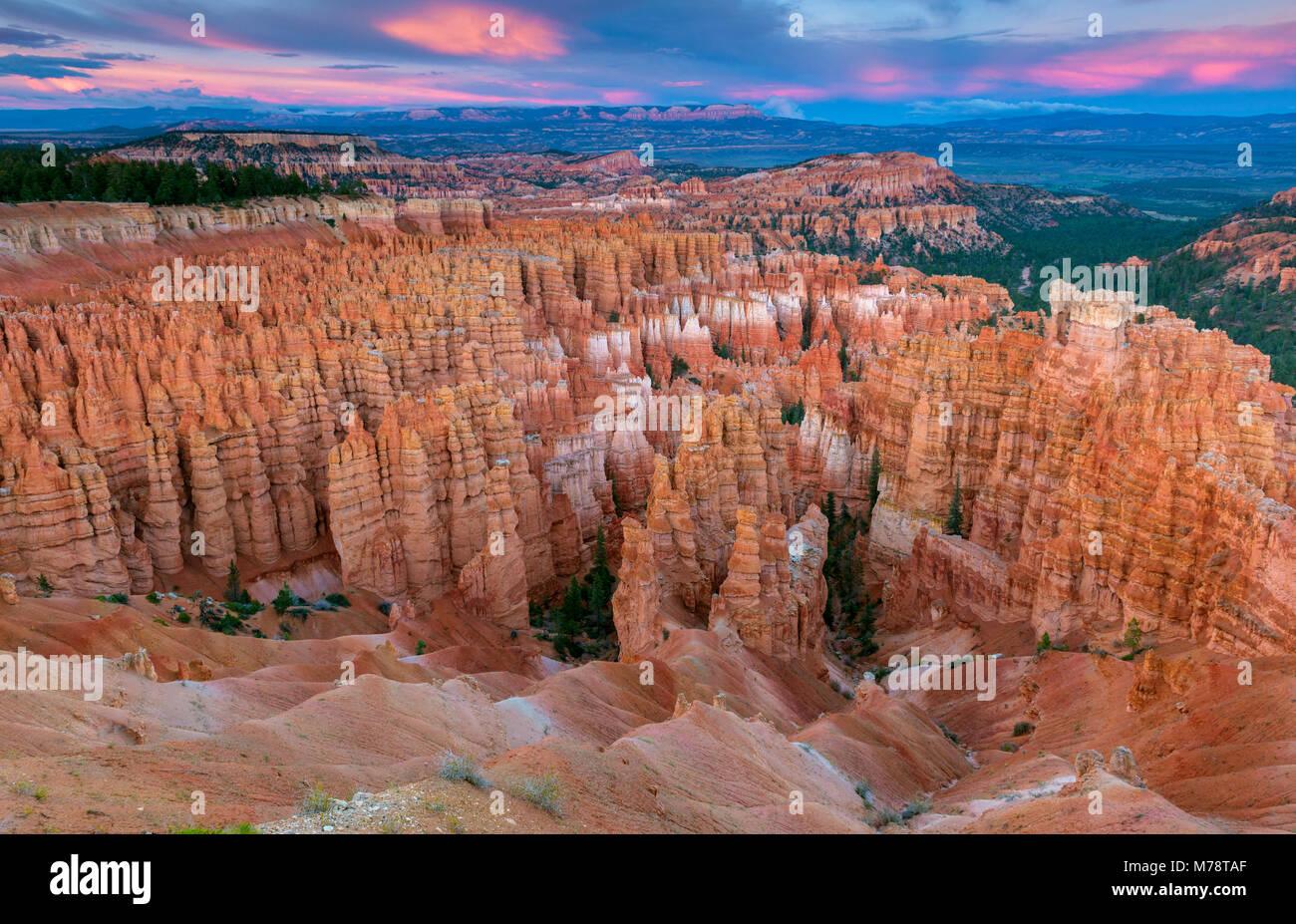 Crépuscule, Wall Street, le Parc National de Bryce Canyon, Utah Photo Stock
