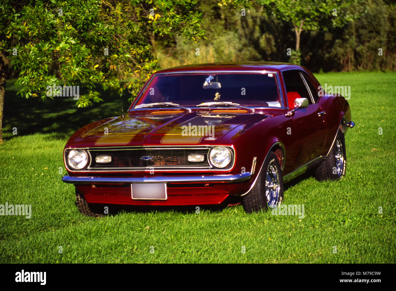 1969 Camaro Photos Images Alamy Ford Crown Victoria Ltd Sur Lherbe Photo Stock