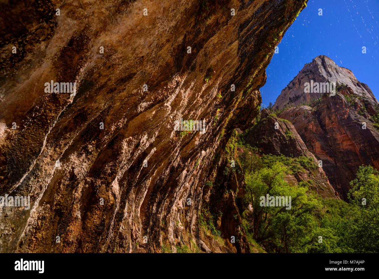 Les USA, Utah, Washington County, Springdale, Zion National Park, Zion Canyon de weeping rock, Photo Stock