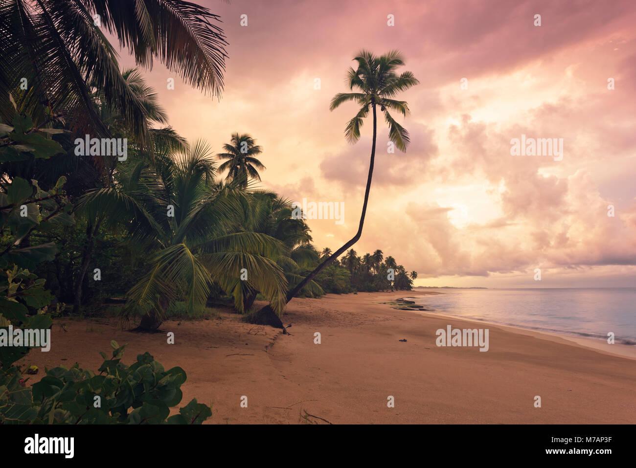 Plage de rêve des Caraïbes dans le coucher du soleil, Punta Vacia, Porto Rico Photo Stock