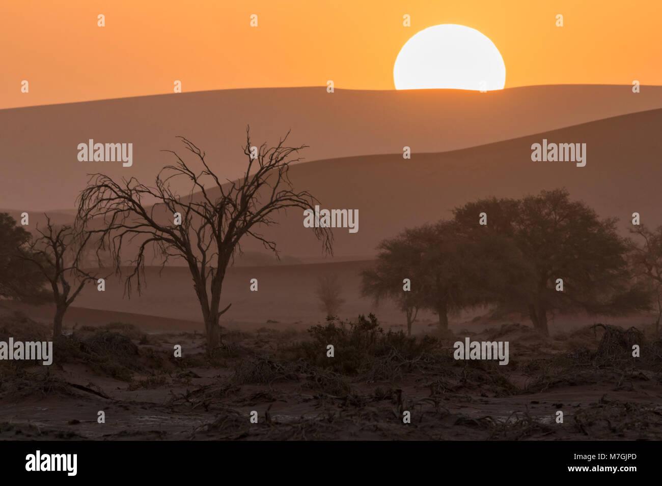 Coucher du soleil morne Photo Stock