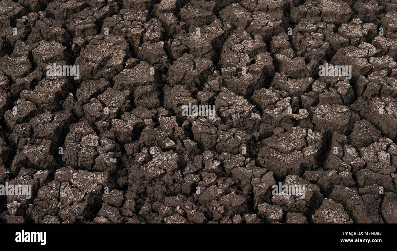 Le sol desséché, montrant les fissures et sécheresse due à la sécheresse qui touchent les Photo Stock