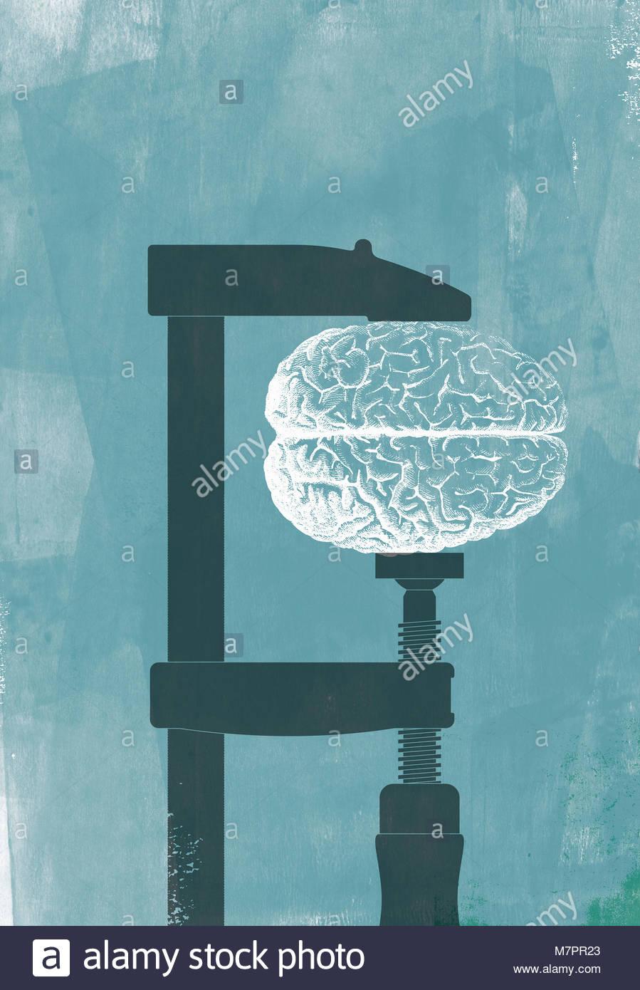 Cerveau humain soit écrasé dans vice grip Photo Stock